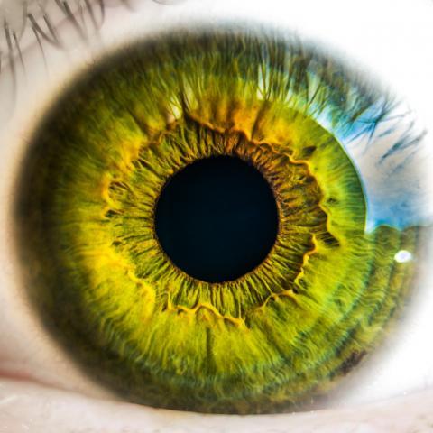 Foto Tookapic, pexels.com