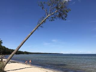 Hiiumaa, Tõrvanina randa on oma kaldus männi ja valge liiva tõttu võrreldud mõnelgi pool veebis Fijiga. Foto Enriika Vunk